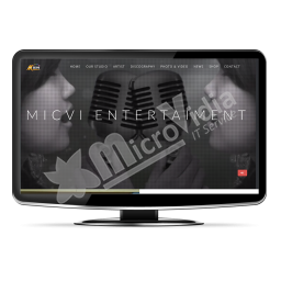 Micvi Entertaiment Music Label